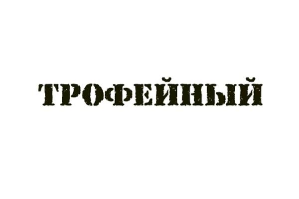 9 мая - Трофейный